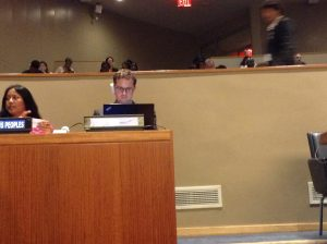 IFLA representative preparing to speak at main session at the UN HLPF
