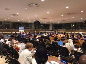 "Side event: ""SDGS on a local level"""