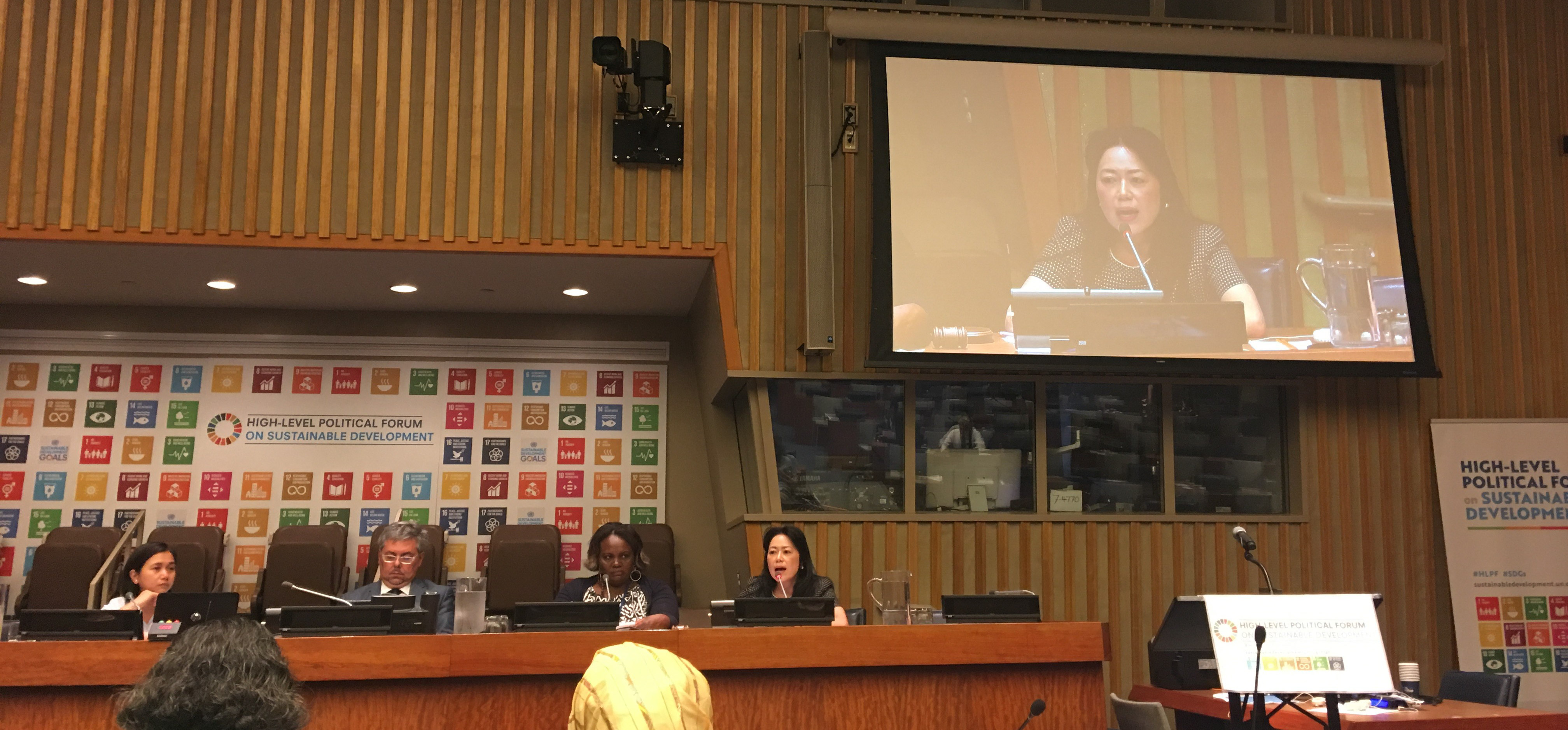 Shoko Arakaki, UNISDR Chief of Branch, Partnerships, Inter-governmental process and Inter-agency cooperation