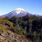 Mountain in Tongariro National Park