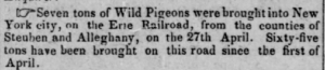 Passenger pigeons mentioned in the Indiana State Sentinel newspaper